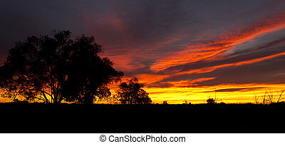 Outback Sunrise - Beginning of a new day in the Australian...