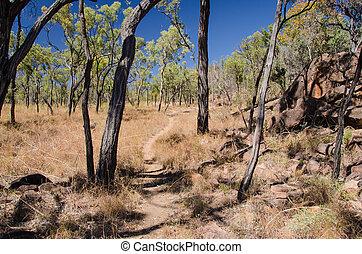 Outback, Undara Volcanic National Park, Australien -...