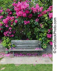 Outdoor bench & flowers.