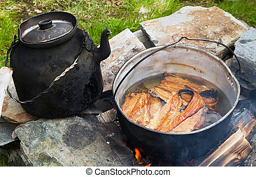 Outdoor cooking. - Fish meal cooking on a campfire.