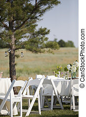 White tables and chairs are set up in a country field with colorful flowers on them.