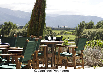 Outdoor eating in vineyard