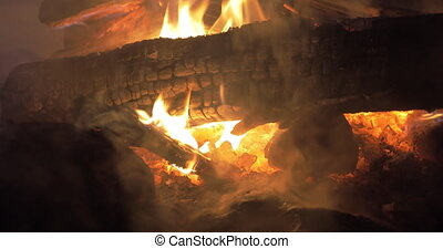 Outdoor fire at night - Burning woods and ember of outdoor...