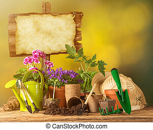 Outdoor gardening tools, plants and can, close-up.