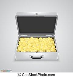 Outdoor metal briefcase coins