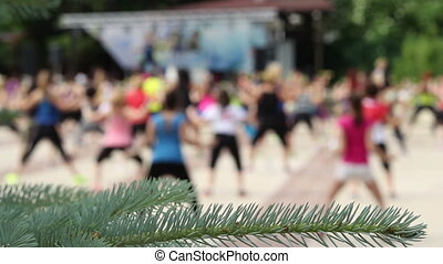 Outdoor People Gymnastics - A group of people are doing...