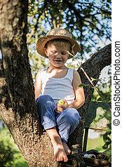 little boy sitting on a tree
