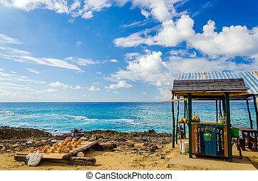Outdoor Tropical Bar and Souvenirs