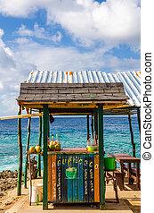 Outdoor Tropical Bar
