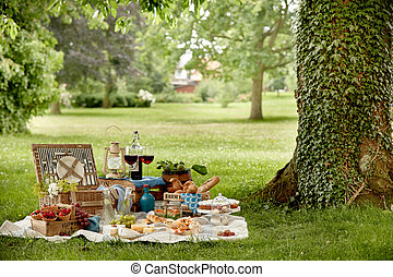 Outdoors lifestyle picnic in a lush green park
