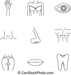 Outer part of body icons set, outline style