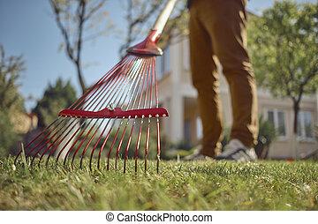 outillage, sien, désinvolte, fin, day., rouges, jeune, vêtements, pelouse, inconnu, haut, backyard., moderne, ensoleillé, râteau jardin, utilisation, gardener., homme, utile