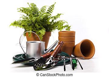 outils, jardin, plante