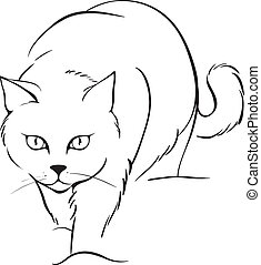 outline, 猫