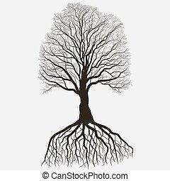 outline., detalhado, silueta, image., árvore, carvalho, sistema, vetorial, pretas, nu, raiz