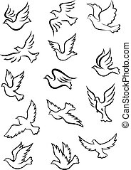 Outline graceful dove and pigeon birds