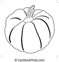 pumpkin, autumn vegetable