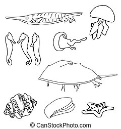 Outlined Sea Life