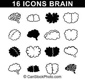 outlines of the brain