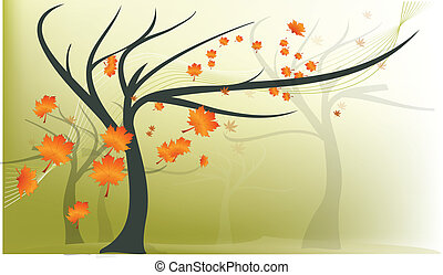 outono, árvore, maple
