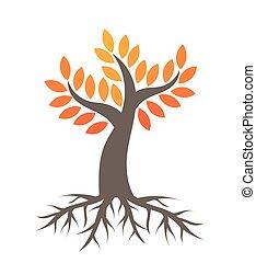 outono, árvore, raizes