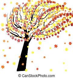 outono, árvore, vento