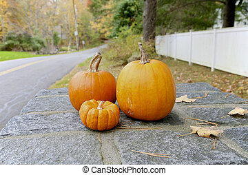 outono, abóbora