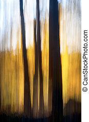 outono, abstratos, floresta