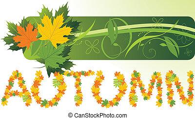outono, bandeira, leaves., maple