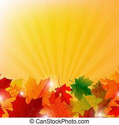 outono, borda, com, sunburst