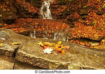 Outono, Cachoeira, cena