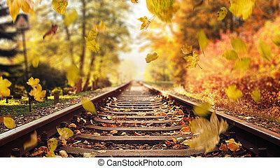 outono, coloridos, folhas, baixo, trilhas, queda, estrada ferro