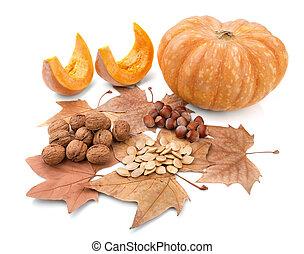 outono, composição, de, bonito, presentes, de, nature.