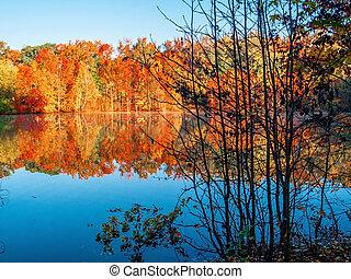 outono, contraste