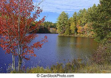 outono, cores, adirondacks