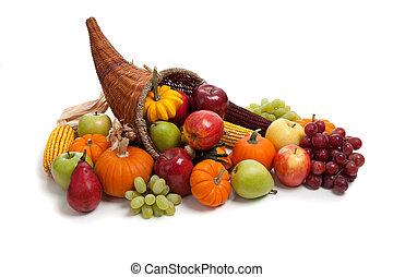outono, cornucópia, ligado, um, branca, costas, chão