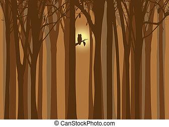 outono, coruja, dia das bruxas, floresta, ilustração
