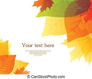 outono, costas, folheia