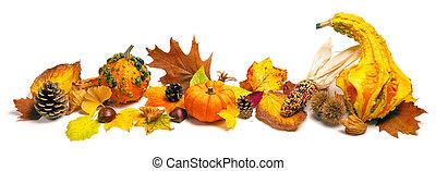 outono, decoração, arranjo
