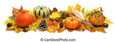 outono, decoração, bandeira