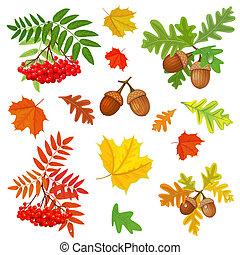 outono, desenho, seu, cobrança