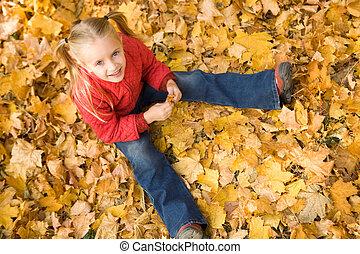 outono, disposição