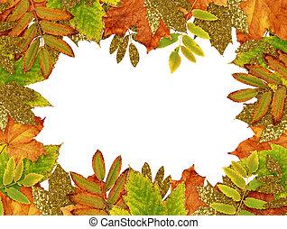 outono, dourado, folhas, quadro, coloridos