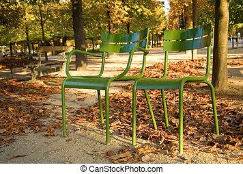 outono, em, paris., típico, parisian, parque, cadeiras, em,...