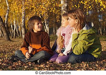 outono, ensolarado, relaxante, família, floresta
