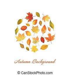 outono, estilo, coloridos, folhas, -, aquarela, vetorial, fundo