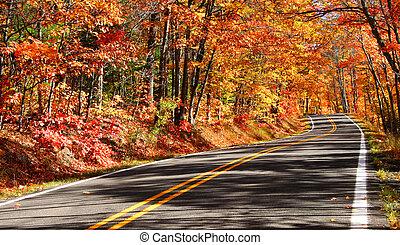 outono, estrada