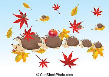 outono, família, ouriço