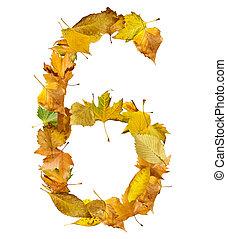 outono, feito, seis, leaves., número