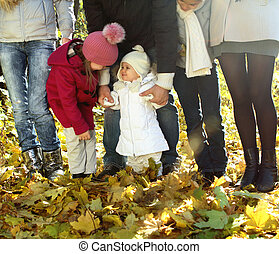 outono, feliz, família jovem, floresta
